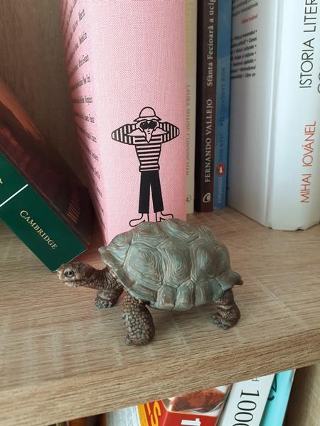 O figurină cu o broască țestoasă în fața unor cărți